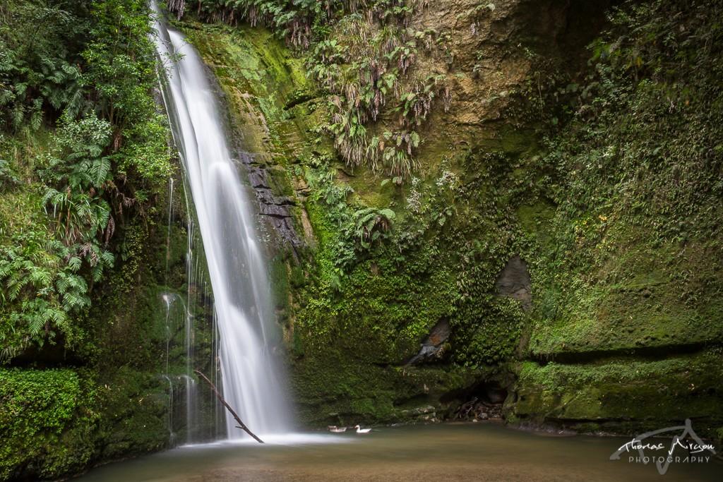 Tangaio Falls